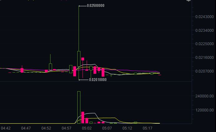 【仮想通貨】海外仕手グループ「The Crypto Leviathan Pamp」の仕手コイン「RCN/BNB)」